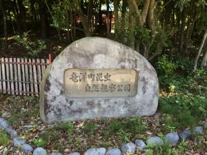 竜洋昆虫公園(お休みでした)