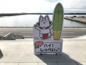 やっぱり磐田市はしっぺいですね(^^)